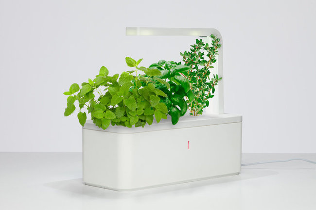 Click Grow A Smart Planter Uses The Latest Technology